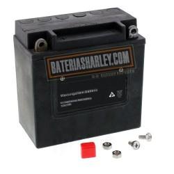 Bateria AGM Alto Rendimiento Harley 66006-70